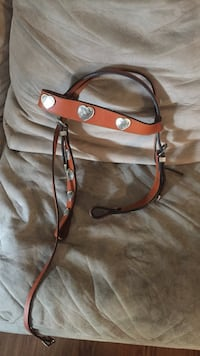 New leather horse reigns Chandler, 85286