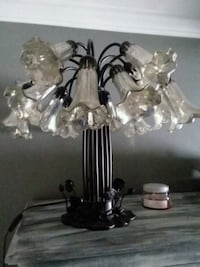 """Tiffany "" style  mercury glass Lilly shade. Rockville"