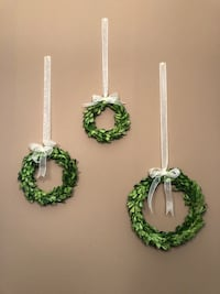 Set of 3 preserved boxwood wreaths Nashville, 37203