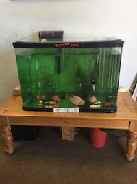 Black framed fish tank with fish 贝克斯菲尔德, 93306