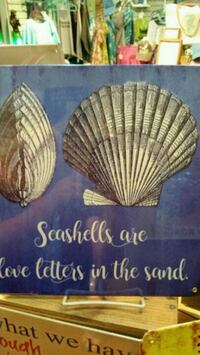 Seashell cute metal sign  San Diego, 92115
