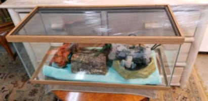 Reptile Tank with screen, waterfowl and Accessorie