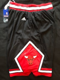 ****BRAND NEW CHICAGO BULLS NBA SHORTS***** Boston, 02135