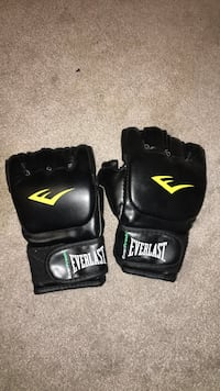 Everlast mma gloves Brampton, L6X 4K5