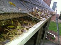 Last-minute gutter cleaning Bedford, 03110