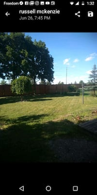 YARD CLEAN UP Kitchener