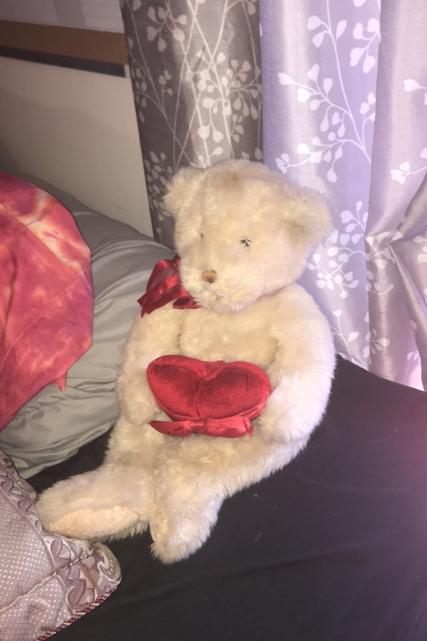 GUND Valentine's Day Teddy Bear 0