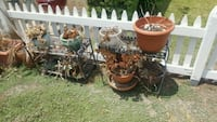 Misc potted plants and pots  Whittier, 90601