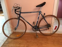 Vintage Skyline Bike  Richmond Hill, L4S 1G8