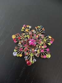 2 in 1 flower shirt clip or necklace Cambridge, N1R 5S2