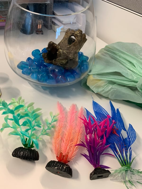 Beta Fish bowl with accessories bb76ccde-883d-4bf4-b9c5-128499eef57a