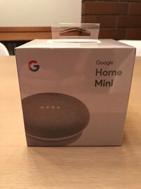 Google Home Mini BNIB Langley, V2Z 2P3