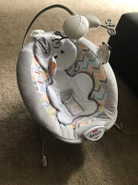 Fisher Price Deluxe Bouncer Portland, 97201