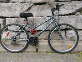 Adult /Teen Bike 54 $ only, ready  to ride