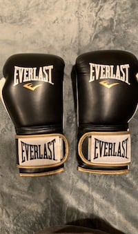 14oz Everlast Boxing Gloves