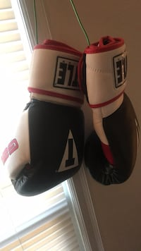 pair of red-and-white Everlast boxing gloves Cedar Rapids, 52404