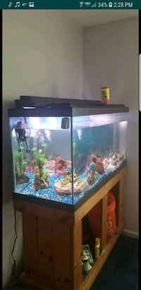 90 gallon fish tank set up 24 km