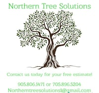Tree cutting Newmarket