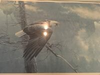 The air, the forest and the watch eagle painting by Robert Bateman Saint-Lazare, J7T 3M6