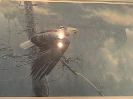 The air, the forest and the watch eagle painting by Robert Bateman