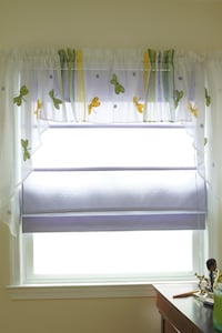 Set of 2 Dragonfly Valances Springfield