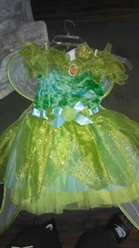 Tinkerbell Costume/w wings  PITTSBURG