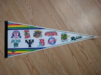 Minor League Baseball Pennant Bowie, 20715