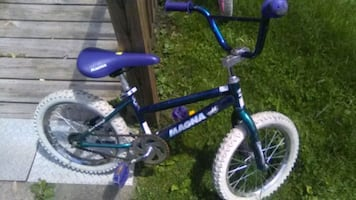 MAGNA BLUE GIRLS BIKE (ages 5-8)