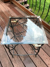 """Pier One Twig Table. Glass, iron and two ceramic birds on the twigs. 18 x 18""""   20 inches high. Great condition. No chips etc Port Coquitlam, V3B 5M6"""