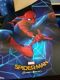 Spiderman Poster Oakville, L6M 3J8