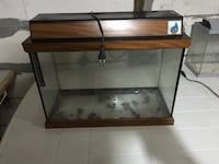 Brown clear glass fish tank