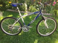 Infinity Telluride Bike 26 inches  or very best offer Hamilton