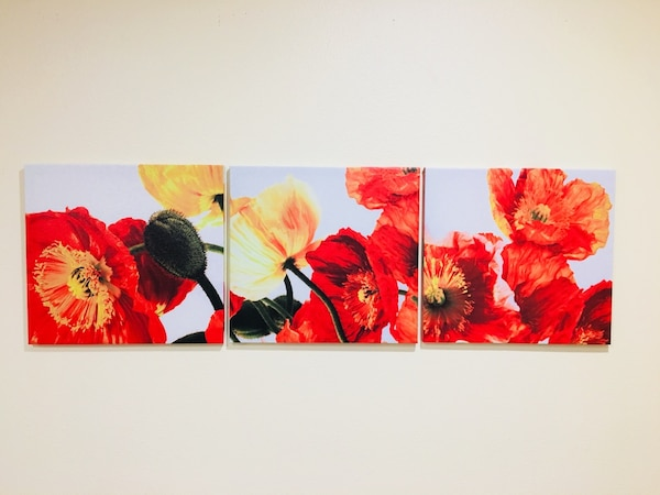 Used 3 Pc Brand New Stretched Canvas Art Print Red Poppy Flowers