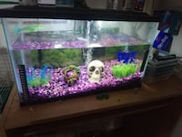 10 gal fish tank Waterloo, N2L 4S9