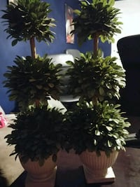 Set of 2 plastic trees 28 in tall Markham, L3T 2E7