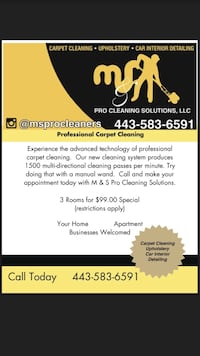Professional carpet cleaning - car interior- upholstery