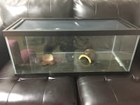 Critter cage for reptile  Olney, 20832