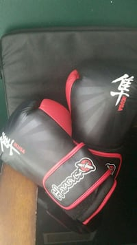 black and red Everlast boxing gloves Toronto, M5M 4N7
