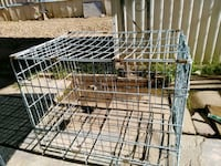 black metal folding dog crate Tucson