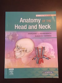 Anatomy of the Head and Neck for dental hygiene, assisting, nursing Toronto