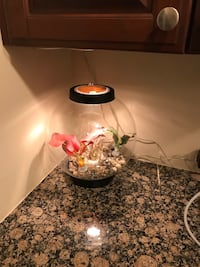Orb Fish Tank - lighted w/air filtration Libertyville, 60048