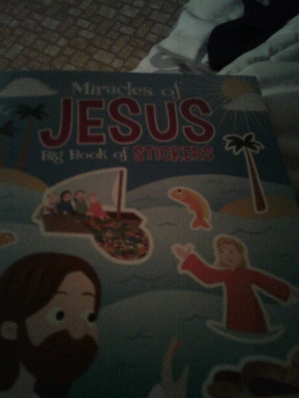 Miracles of Jesus book