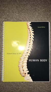 A brief atlas of the human body, very interesting and bring new! West Long Branch, 07764