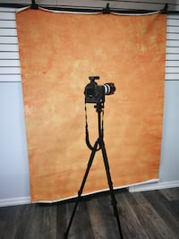 Custom Painted Backdrop/Background for Photography Toronto