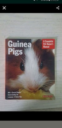 Guinea Pig Care Book  Elgin, 60120