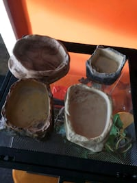reptile dishes in great shape Thorold, L2V 3M4