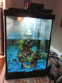 40 gal aquarium with water pump and air pump and decoration Reston, 20194