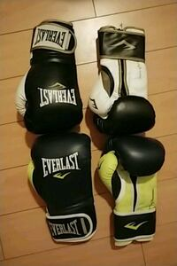 NEW** Everlast boxing gloves Burnaby, V5C 6A9