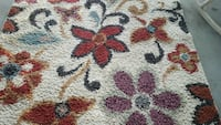 and red floral area rug