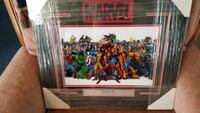 Stan Lee Marvel Print  Hagerstown, 21740